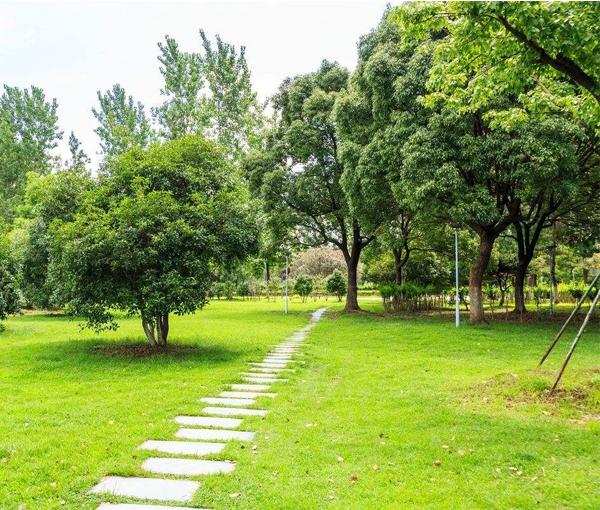 黑龙江园林绿化